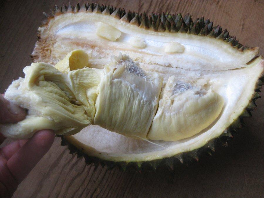 DurianFlesh